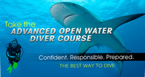 padi advanced
